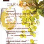 Actividades entorno al vino en el Ateneo de Almagro
